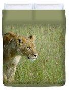 lion Masai Mara Kenya Duvet Cover