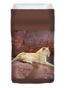 Lioness On A Red Rock Duvet Cover