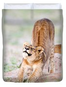 Lioness Panthera Leo Stretching Duvet Cover