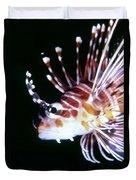 Lionfish 3 Duvet Cover