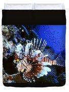 Lionfish 4 Duvet Cover