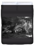 Lions Me And My Guy Duvet Cover
