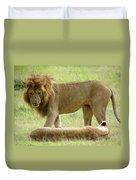 Lions On The Masai Mara Duvet Cover