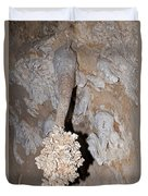 Lions Tail Carlsbad Caverns National Park Duvet Cover