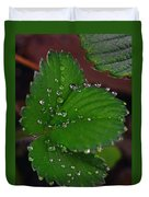Liquid Pearls On Strawberry Leaves Duvet Cover
