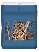 Lit Up Owl Duvet Cover