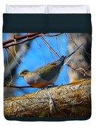 Little Birdie 2 Duvet Cover