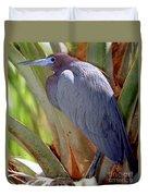 Little Blue Heron Male In Breeding Duvet Cover