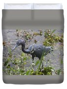 Little Blue Heron - Waiting For Prey Duvet Cover