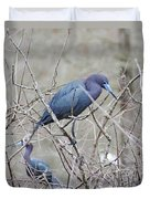 Little Blue Lake Martin Louisiana Duvet Cover