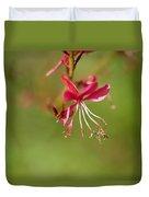 Little Bug On The Tip Of A Flower Duvet Cover