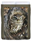Little Owl 6 Duvet Cover