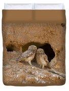 Little Owl Athene Noctua  Duvet Cover