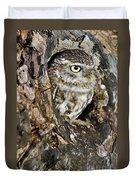 Little Owl In Hollow Tree Duvet Cover