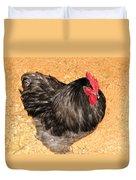 Live Chicken - 2011 Houston Livestock Show Duvet Cover