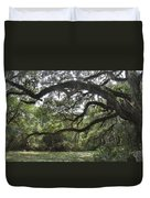 Live Oaks And Spanish Moss A Duvet Cover