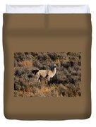 Llama Duvet Cover