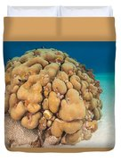 Lobed Star Coral Duvet Cover