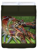 lobster season Re0027 Duvet Cover by Carey Chen