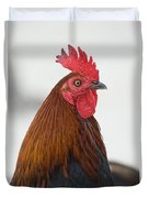 Local Poultry In Key West Duvet Cover