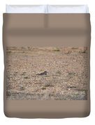 Lone Killdeer Duvet Cover
