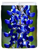 Lone Star Bluebonnet Duvet Cover