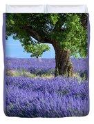 Lone Tree In Lavender Duvet Cover
