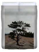 Lone Tree In Stone Mountain State Park North Carolina Duvet Cover