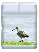 Long Billed Curlew  Duvet Cover