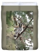 Long Eared Owl At Attention Duvet Cover