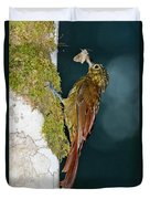 Long-tailed Woodcreeper Duvet Cover