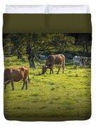 Longhorn Steer Herd In A Pasture Duvet Cover