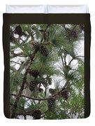 Longleaf Pine Cones Duvet Cover