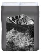 Longs Peak 14256 Ft Duvet Cover