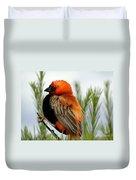 Lonley Bird Duvet Cover
