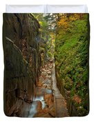 Looking Down Flume Gorge Duvet Cover