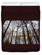 Looking Skyward Into Autumn Trees Duvet Cover