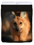 Looks Like A Fox Duvet Cover