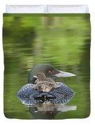 Loon Chicks -  Nap Time Duvet Cover