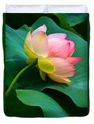Lotus Blossom And Leaves Duvet Cover by Byron Varvarigos