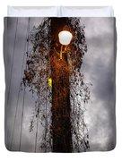 Louisiana Light Post Duvet Cover
