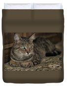 Lounging Cat Duvet Cover