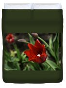 Love Tulip Time Duvet Cover