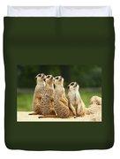 Lovely Group Of Meerkats Duvet Cover