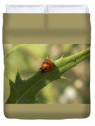 Lovely Lady Bug Duvet Cover