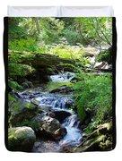 Lower Granite Falls 2 Duvet Cover