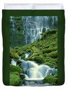 Lower Proxy Falls Duvet Cover