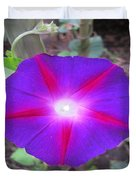 Luminous Morning Glory In Purple Shines On You Duvet Cover