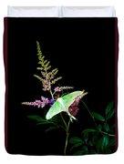 Luna Moth Astilby Flower  Duvet Cover
