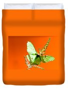 Luna Moth On Astilby Orange Back Ground Duvet Cover